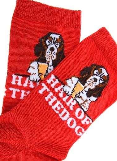 Loves You Köpek Baskılı Çorap Kırmızı
